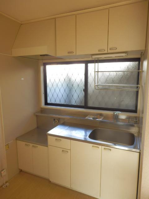 ニューハイツイザワ2 110号室のキッチン