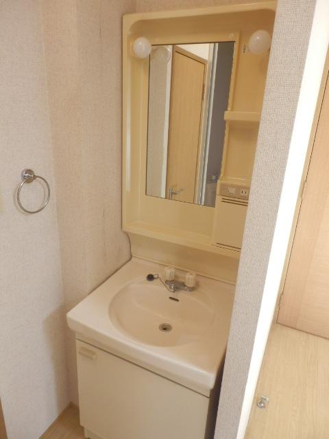 ニューハイツイザワ2 110号室の洗面所