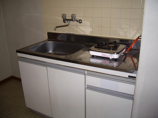 サンモール 101号室のキッチン