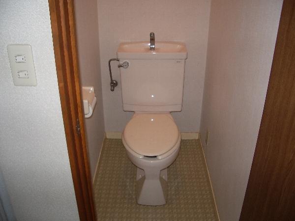 サンモール 101号室のトイレ