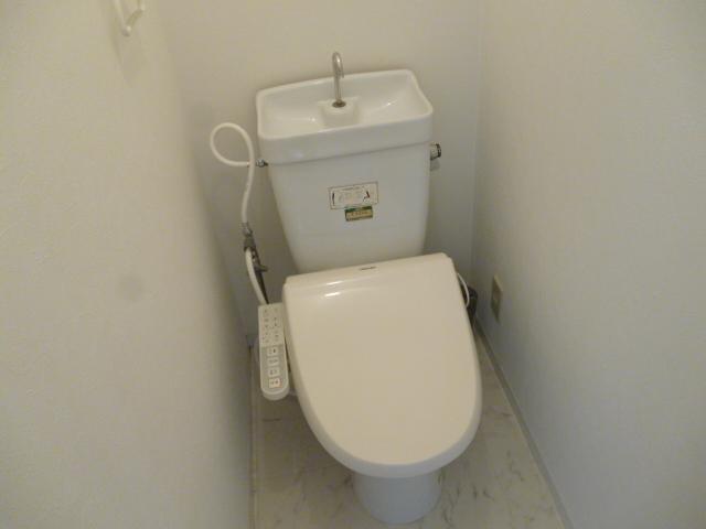 テラムラハイツ 101号室のトイレ