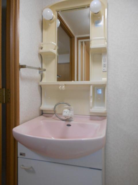 サウス鴨宮 202号室の洗面所