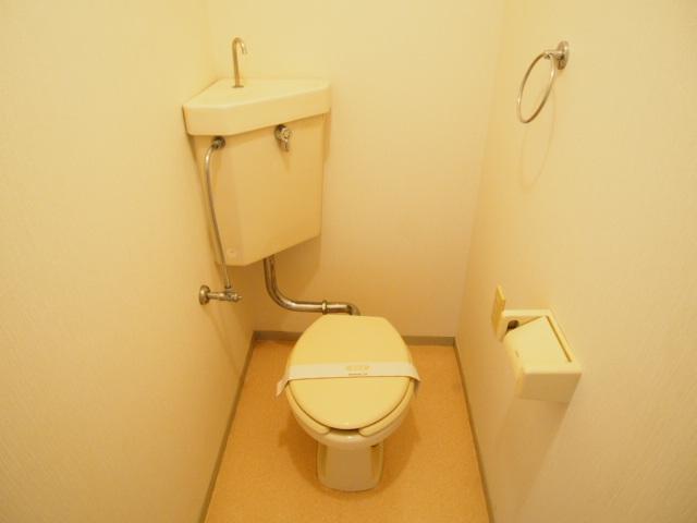 セントラルハイム 203号室のトイレ