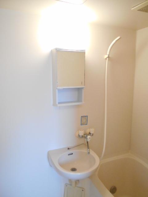 セルアーモ北春日部白石Ⅰ 203号室の洗面所