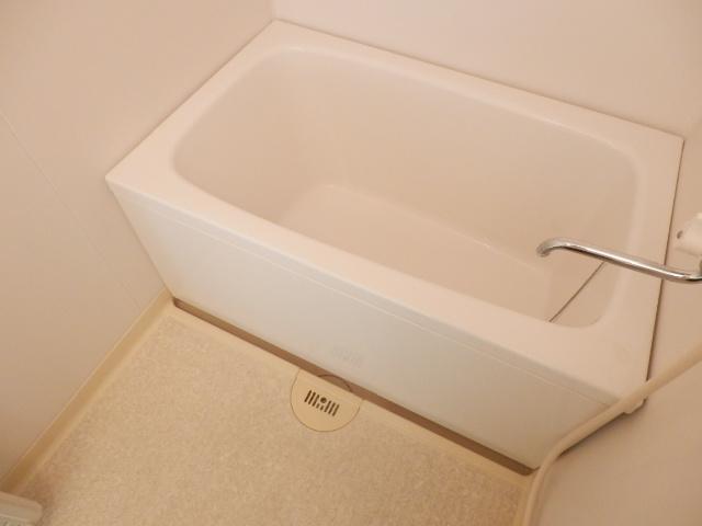 ヴィラセイワB 201号室の風呂