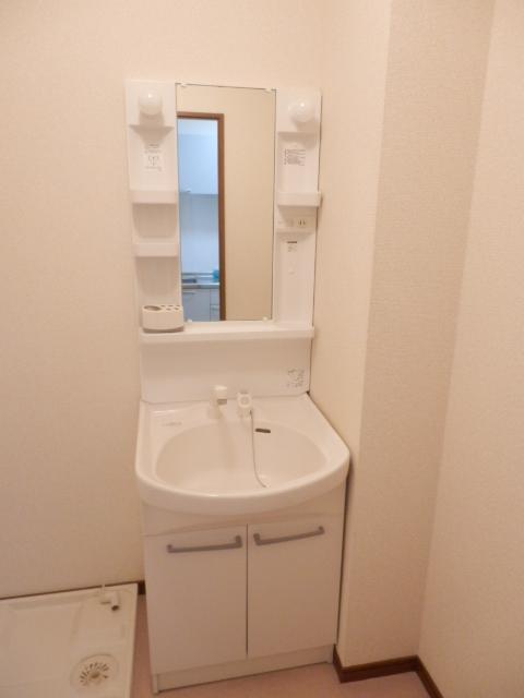 アムール MIYAMA 104号室の洗面所