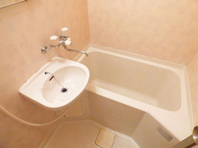 サンコーポ広瀬 102号室の洗面所