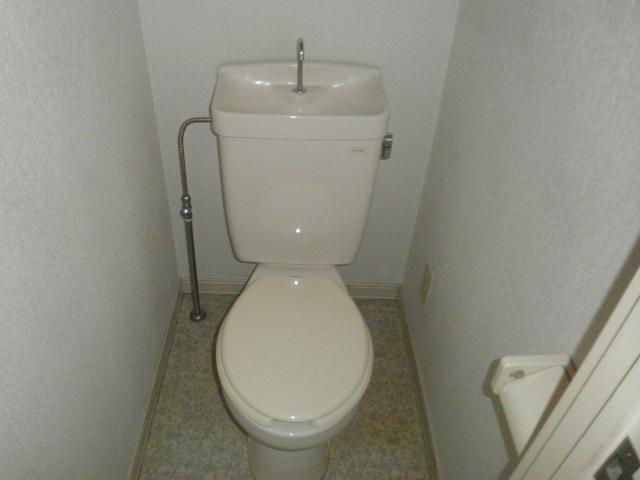 ドミールパスァパス 103号室のトイレ
