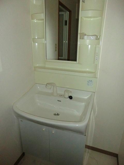 レージュ至来 205号室の洗面所