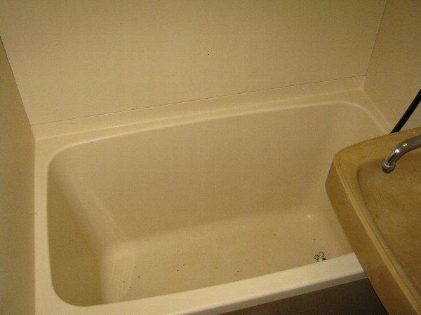 神作シティー 2B号室の風呂