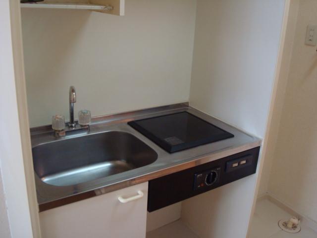 ハイツ深田池 102号室のキッチン