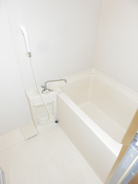 プチメゾン フジ 101号室の風呂