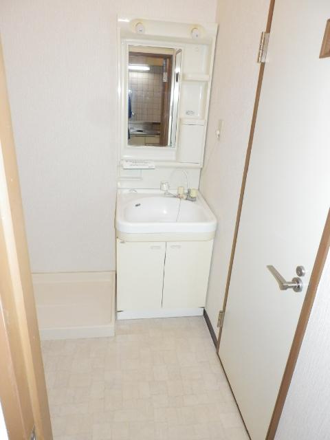 プチメゾン フジ 101号室の洗面所