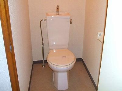 マンションアヤメ 303号室のトイレ