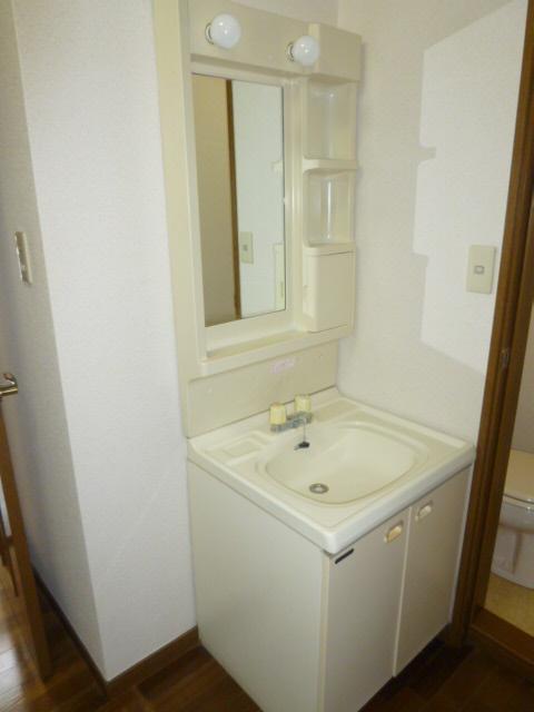 オリーブハウス2 203号室の洗面所