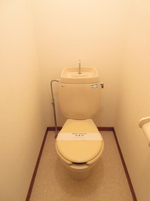 ベルガーネットA・B B101号室のトイレ