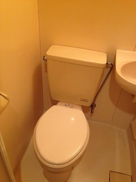 マンション渡田 302号室のトイレ