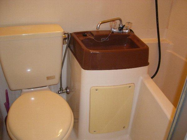 プレイシオン 201号室のトイレ