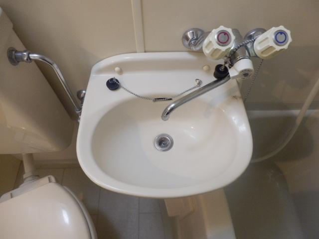 フォッセ国立 303号室の洗面所