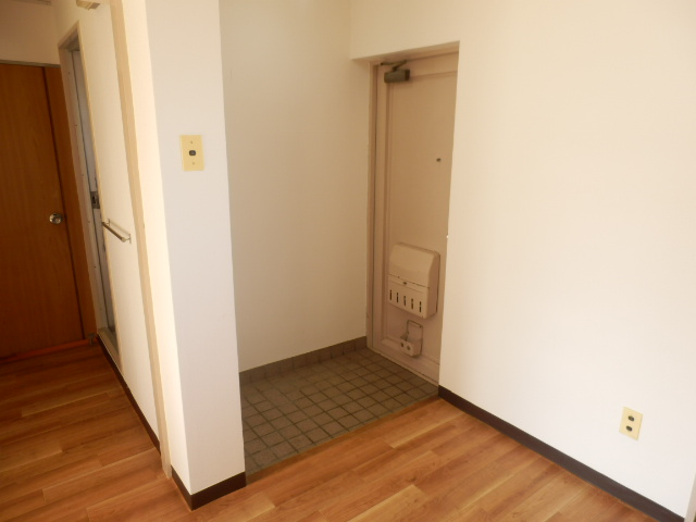 大野ハイツ 302号室の玄関