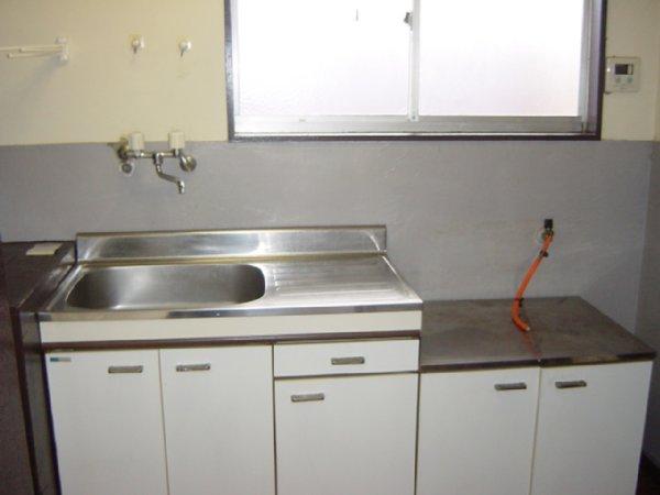 メゾン新川口東棟 201号室のキッチン