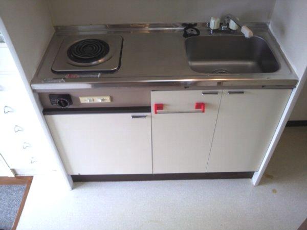 カレッジ平成 204号室のキッチン