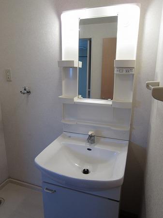 セジュール是政 103号室の洗面所