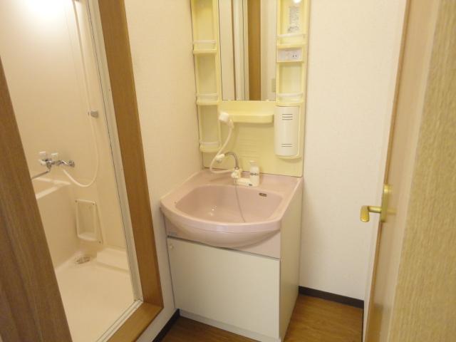 クレセール大和 101号室の洗面所