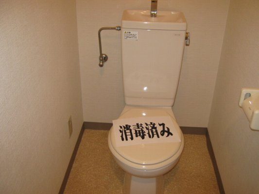 リベルタ・パラッツォ 303号室のトイレ