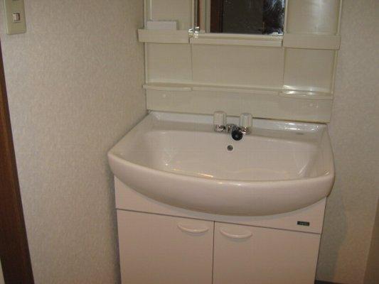 リベルタ・パラッツォ 303号室の洗面所