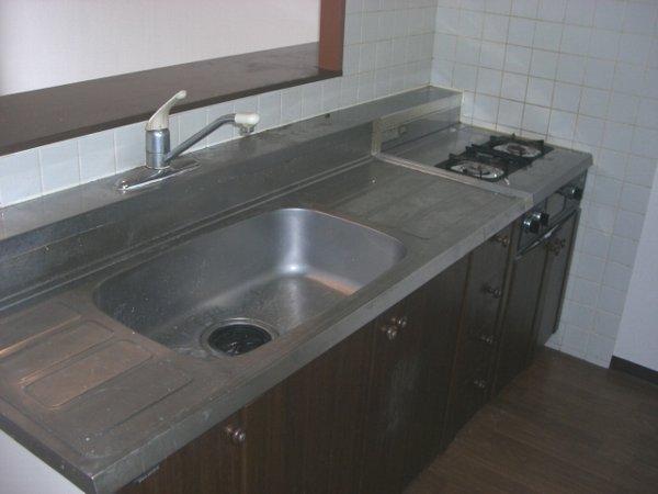 アルボレダ武蔵浦和Ⅰ 301号室のキッチン