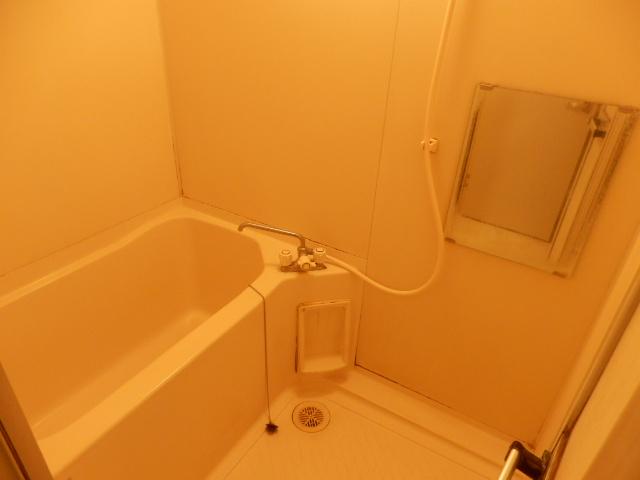 アランチォーネ 406号室の風呂
