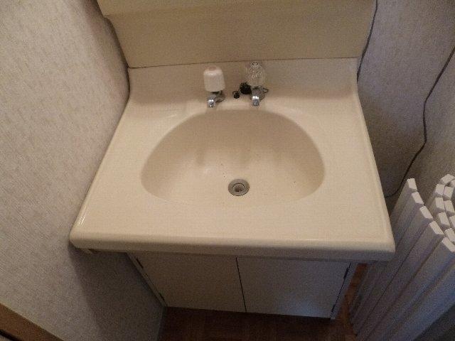 サンシティーセジュール 103号室の洗面所