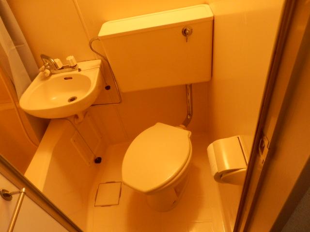 ソシアーレミラン武蔵浦和Ⅱ 311号室のトイレ