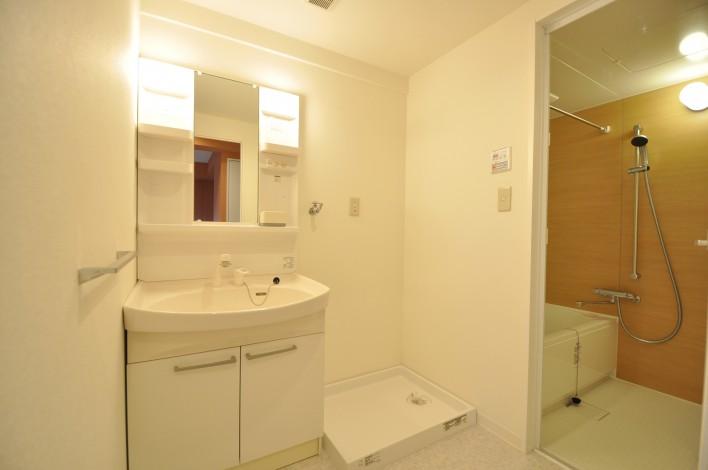 ハピネス飯田5号館 202号室の洗面所