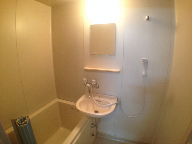 メゾン・ドゥ アリス 202号室の洗面所