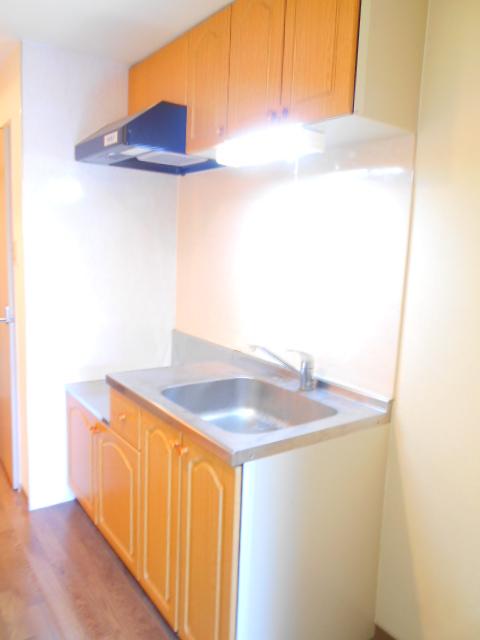 セオークス東山 307号室のキッチン