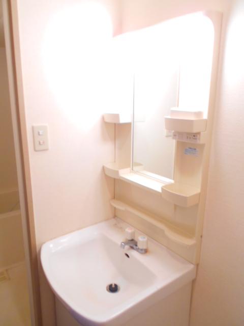 セオークス東山 307号室の洗面所
