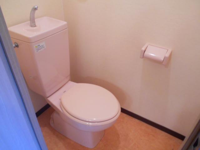 セオークス東山 307号室のトイレ