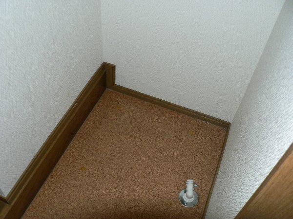 パセオ神里 2B号室の洗面所