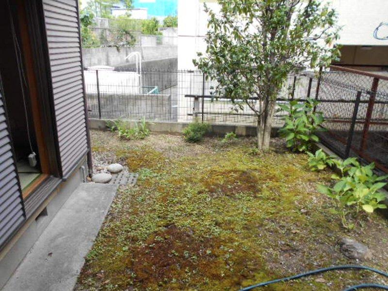 坂本貸家の庭