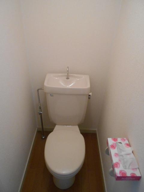 ティーエムズ香坂 204号室のトイレ