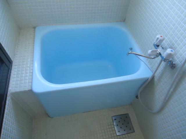 ハイネス本郷 103号室の風呂