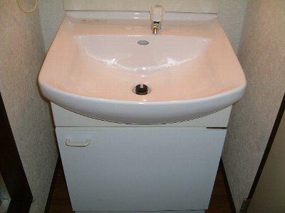 ニューハイツ市川 201号室の洗面所