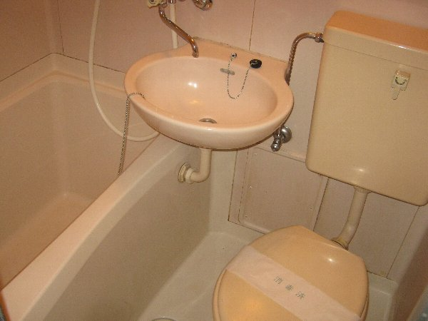 住吉パレス 102号室のトイレ