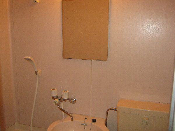住吉パレス 102号室の洗面所