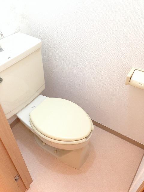 岸ハイツ 105号室のトイレ