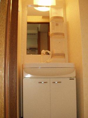 NAVONA 302号室の洗面所