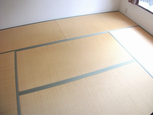 アビタシオンMIWA 101号室のリビング