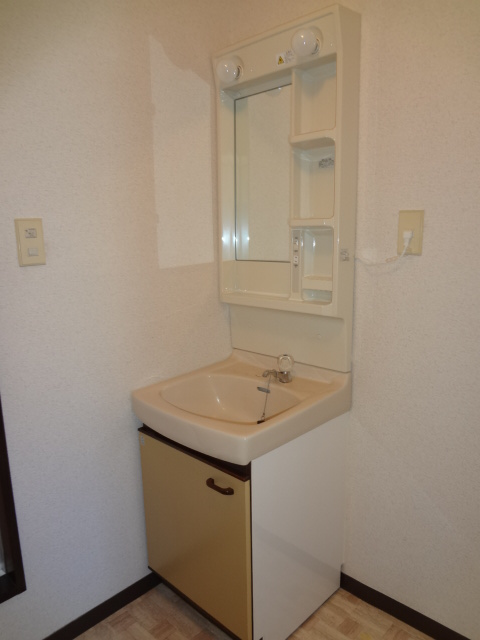 第三ちほコーポ 201号室の洗面所